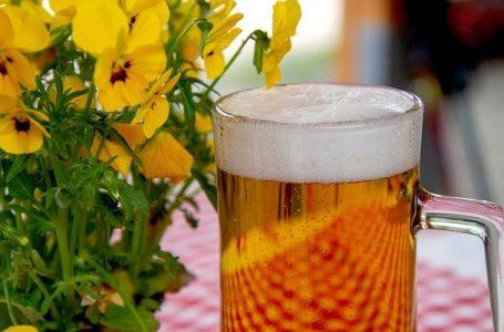 Bière artisanale RECETTE