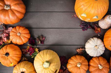Découvrez les 5 légumes à consommer en octobre