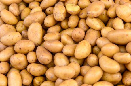 Découvrez 5 recettes à base de pomme de terre