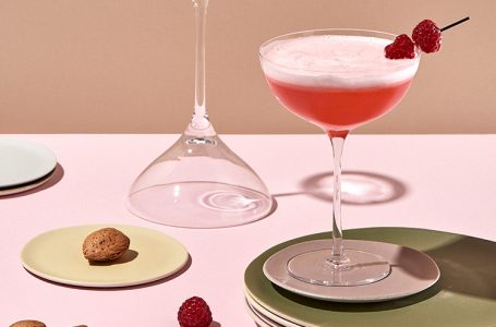 COCKTAIL RASPBERRY BERET